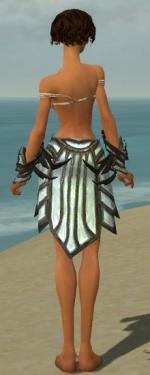 Paragon Primeval Armor F gray arms legs back.jpg