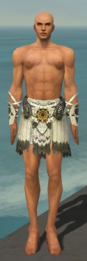 Paragon Sunspear Armor M gray arms legs front.jpg