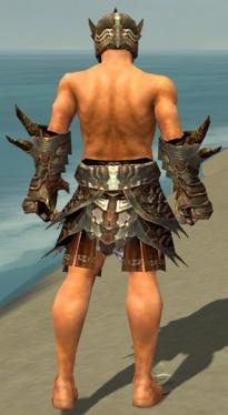 Warrior Monument Armor M gray arms legs back.jpg