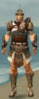 Warrior Vabbian Armor M gray front.jpg