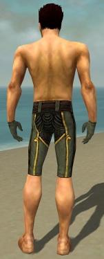 Mesmer Asuran Armor M gray arms legs back.jpg