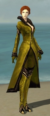 Mesmer Norn Armor F dyed front.jpg