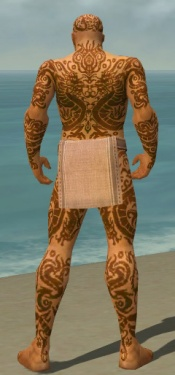 Monk Dragon Armor M dyed back.jpg