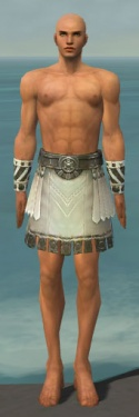 Paragon Istani Armor M gray arms legs front.jpg
