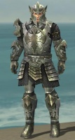 Warrior Elite Templar Armor M gray front.jpg
