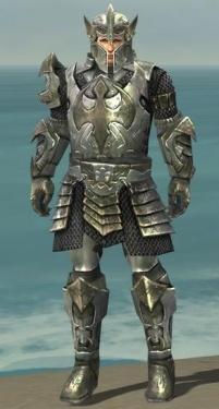 Warrior Elite Templar Armor M gray front.jpg