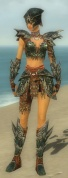 Warrior Luxon Armor F gray front.jpg