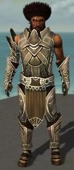 Koss Armor DajkahInlet Front.jpg