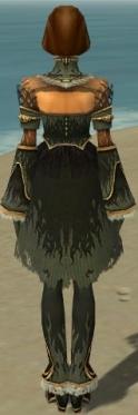 Mesmer Primeval Armor F gray back.jpg