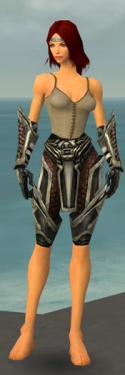 Warrior Elite Kurzick Armor F gray arms legs front.jpg