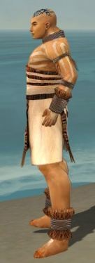 Monk Istani Armor M dyed side.jpg