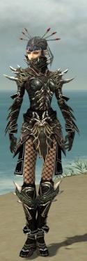Necromancer Elite Luxon Armor F gray front.jpg