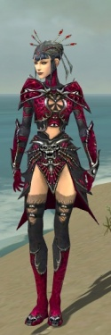 Necromancer Elite Necrotic Armor F dyed front.jpg