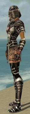 Warrior Ancient Armor F gray side.jpg