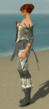 Elementalist Primeval Armor F gray side.jpg