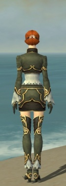 Mesmer Monument Armor F gray back.jpg