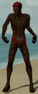 Necromancer Elite Scar Pattern Armor M dyed front.jpg