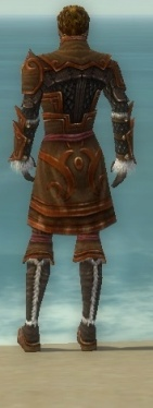Ranger Elite Canthan Armor M dyed back.jpg