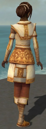 Tahlkora Primeval Armour Back.jpg