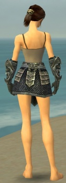 Warrior Elite Templar Armor F gray arms legs back.jpg