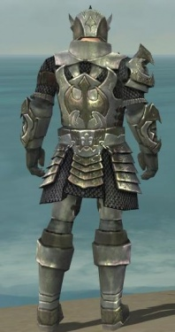 Warrior Elite Templar Armor M gray back.jpg