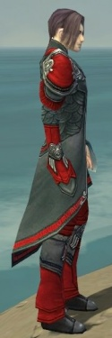 Elementalist Asuran Armor M dyed side.jpg