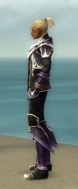 Elementalist Deldrimor Armor M dyed side.jpg