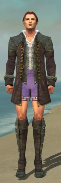 Mesmer Tyrian Armor M gray chest feet front.jpg