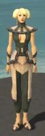 Monk Obsidian Armor F gray front.jpg