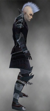 Necromancer Deldrimor Armor M gray side.jpg