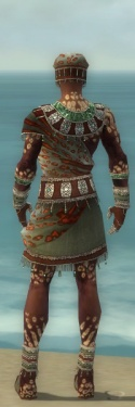 Ritualist Elite Exotic Armor M gray back.jpg