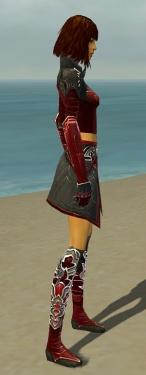 Assassin Deldrimor Armor F dyed side.jpg
