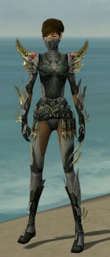 Assassin Elite Imperial Armor F gray front.jpg