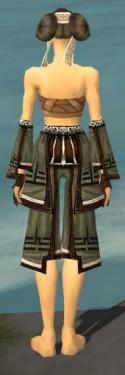 Monk Kurzick Armor F gray arms legs back.jpg