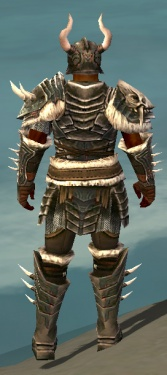 Warrior Norn Armor M gray back.jpg