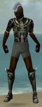 Necromancer Shing Jea Armor M gray chest feet front.jpg