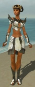 Paragon Ancient Armor F gray front.jpg