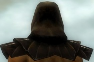 Dervish Primeval Armor M dyed head back.jpg