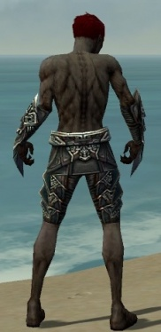 Necromancer Monument Armor M gray arms legs back.jpg