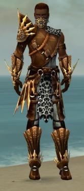 Ranger Elite Sunspear Armor M dyed front.jpg