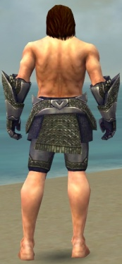 Warrior Platemail Armor M gray arms legs back.jpg