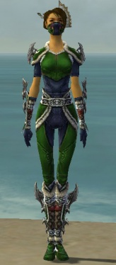 Assassin Norn Armor F dyed front.jpg