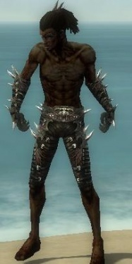 Necromancer Elite Canthan Armor M gray arms legs front.jpg
