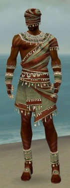 Ritualist Exotic Armor M gray front.jpg