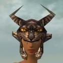 Warrior Charr Hide Armor F gray head front.jpg
