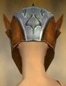 Warrior Elite Templar Armor F dyed head back.jpg