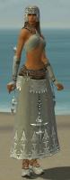Dervish Vabbian Armor F gray front.jpg