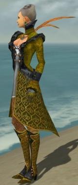 Mesmer Elite Elegant Armor F dyed side.jpg