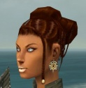 Paragon Elite Sunspear Armor F gray earrings.jpg