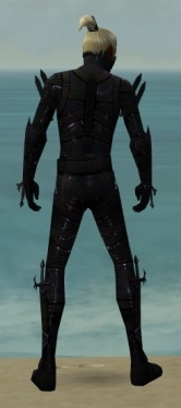 Assassin Obsidian Armor M dyed back.jpg